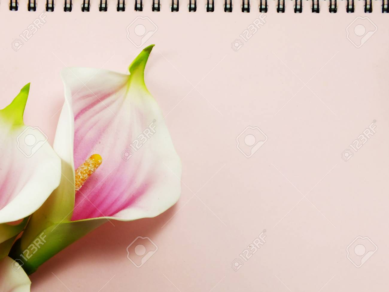 Note book diary and beautiful flower bouquet background stock photo note book diary and beautiful flower bouquet background stock photo 46024627 izmirmasajfo