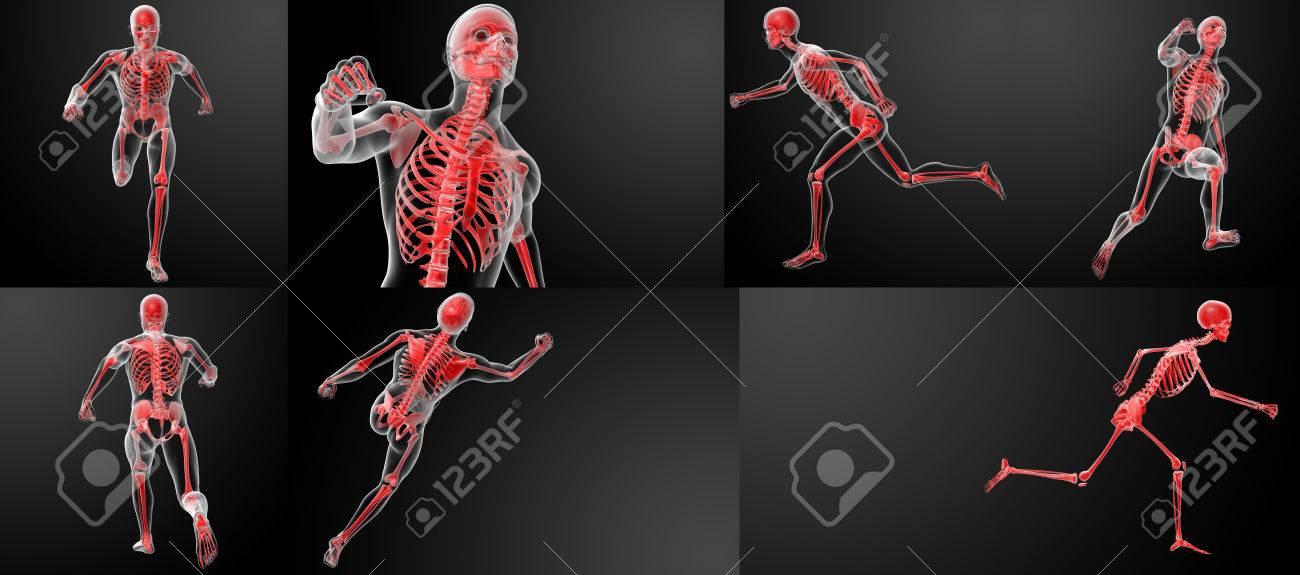 3D-Darstellung Der Menschlichen Anatomie Von Röntgenstrahlen Laufen ...