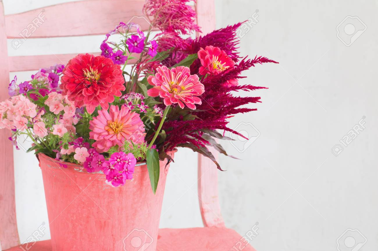Pink Flowers In Bucket On White Background Stock Photo Picture And Royalty Free Image Image 94252334