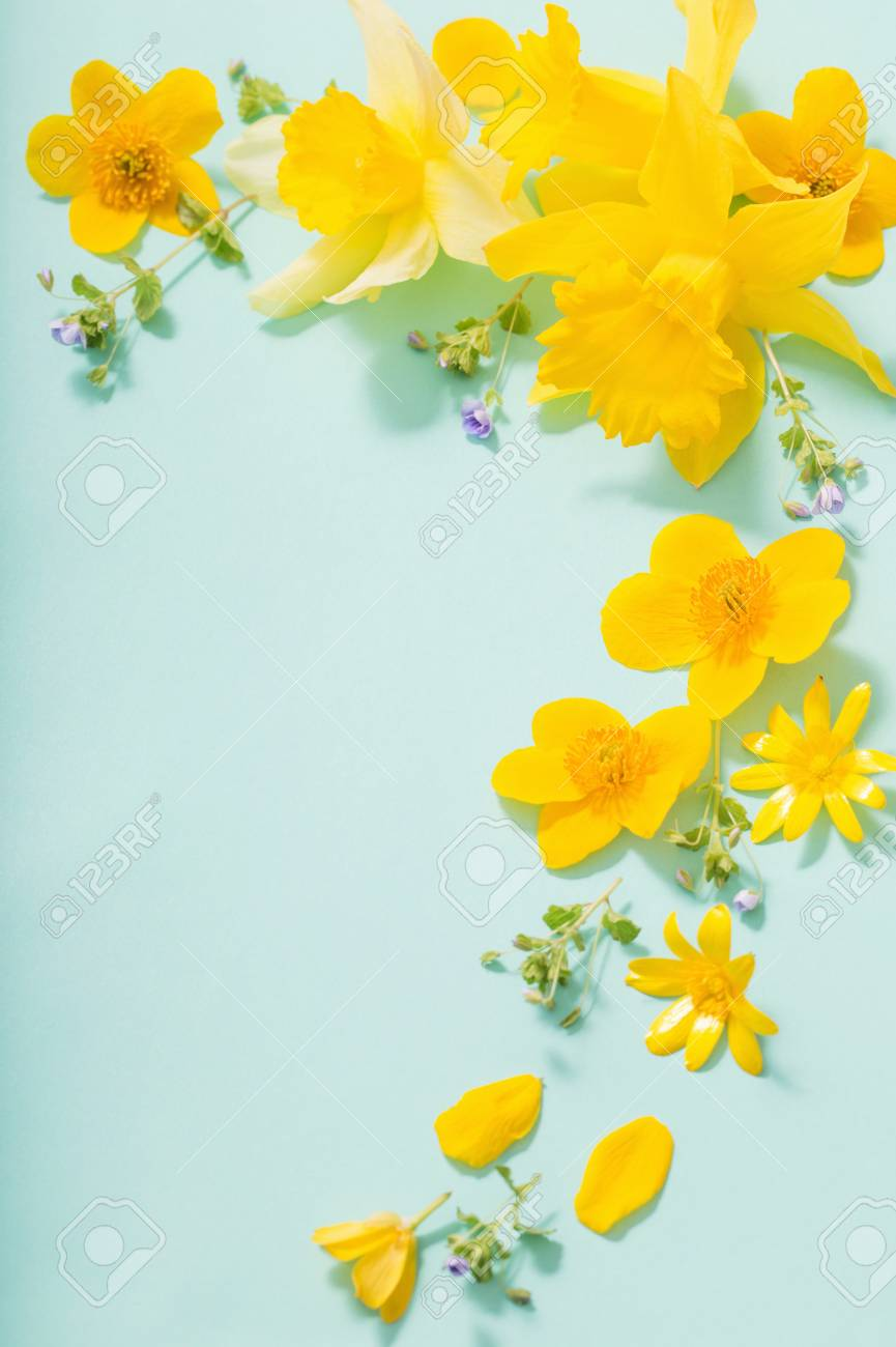 spring flowers on green background - 122347608