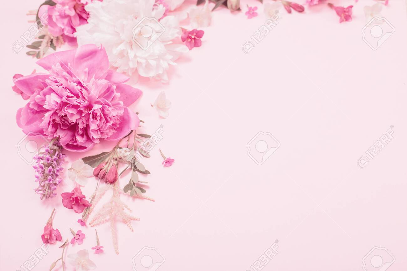 beautiful flowers on pink paper background - 150240265