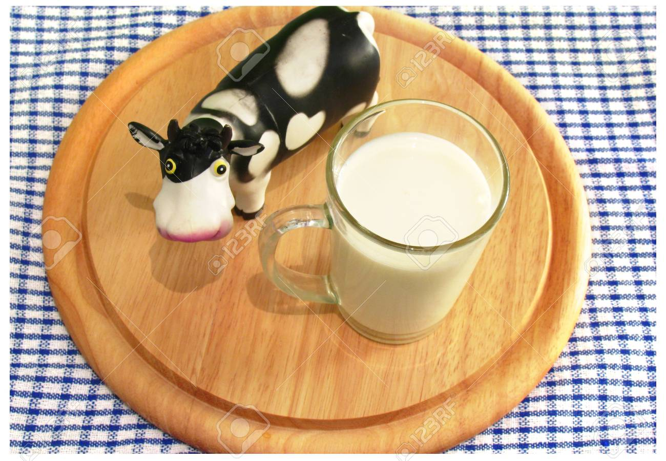 Milk is gift for your health Stock Photo - 5733898