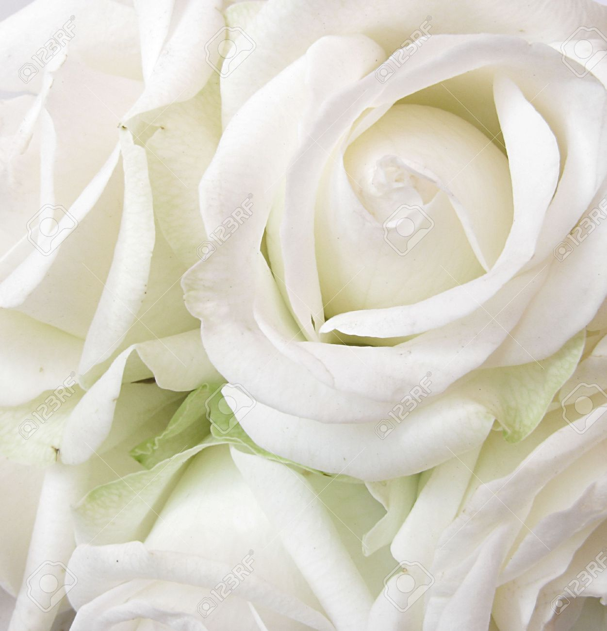 Funeral Background Pictures
