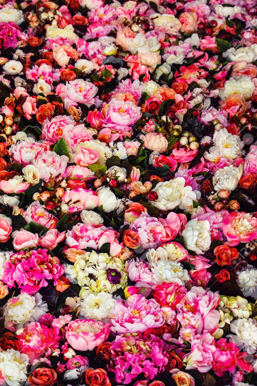 Vertical Image Of Beautiful Flowers Wall Background With Amazing