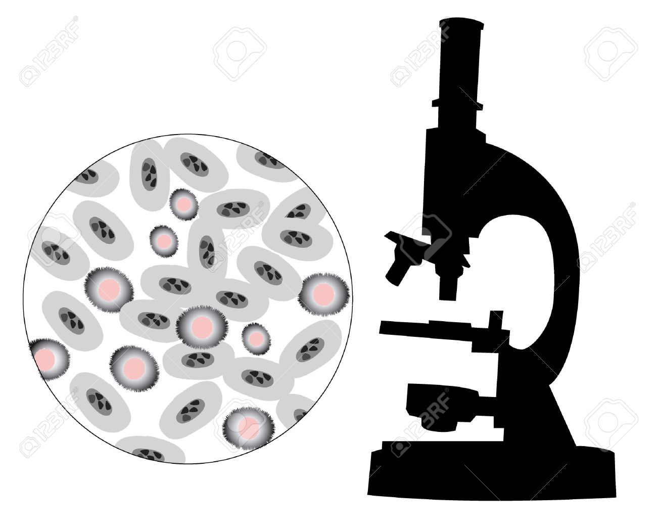 Silhouette of a microscope with the image of bacteria on a white background - 8370506