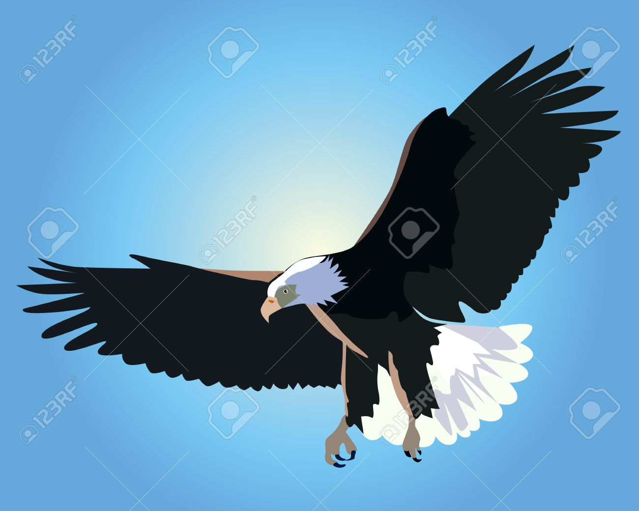 flying bald eagle on a background of blue sky royalty free