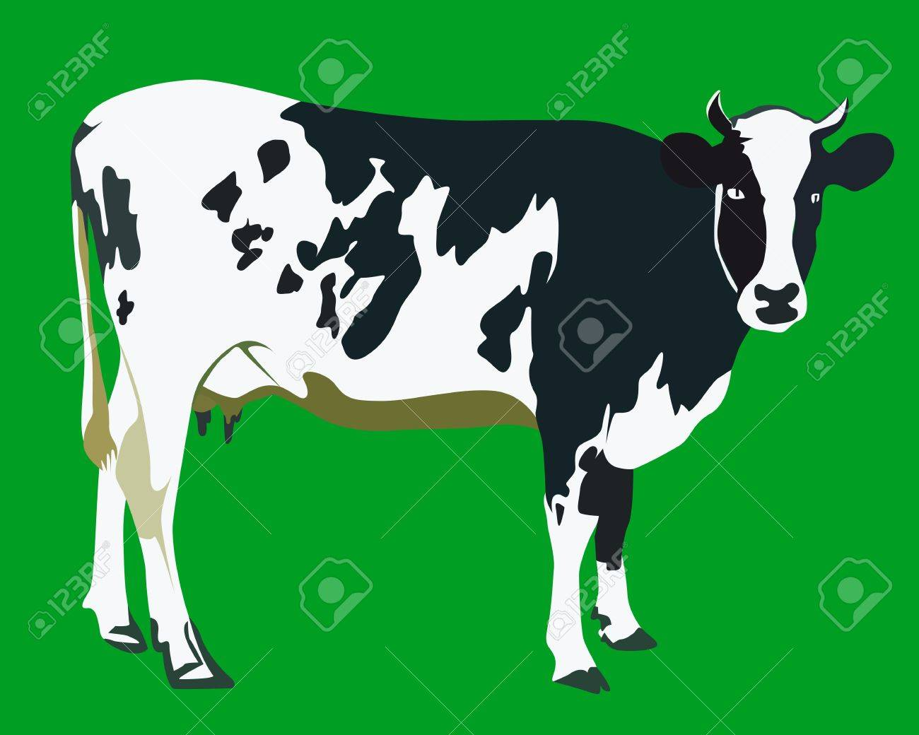 spotted cow on a green background Stock Vector - 9934749