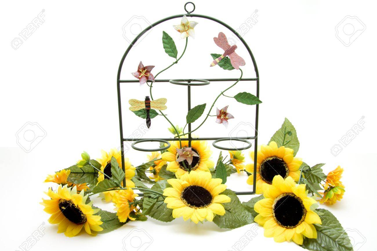 metal frames with sunflowers stock photo 12978573 - Sunflower Picture Frames