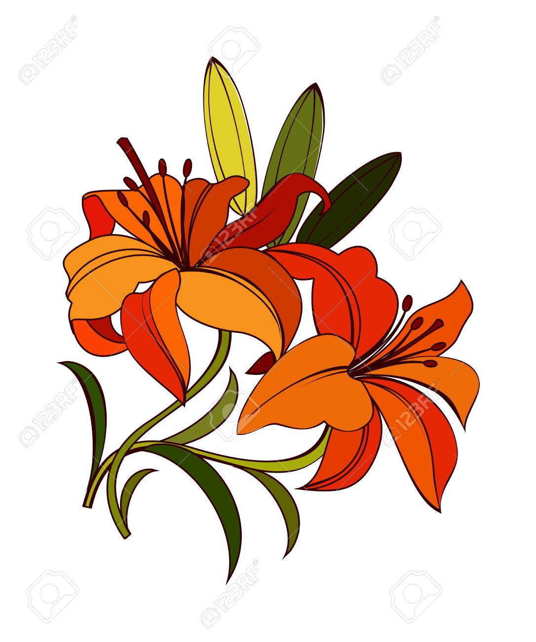 Bright Orange Scarlet Lily Flower With Green Leaves Isolated On