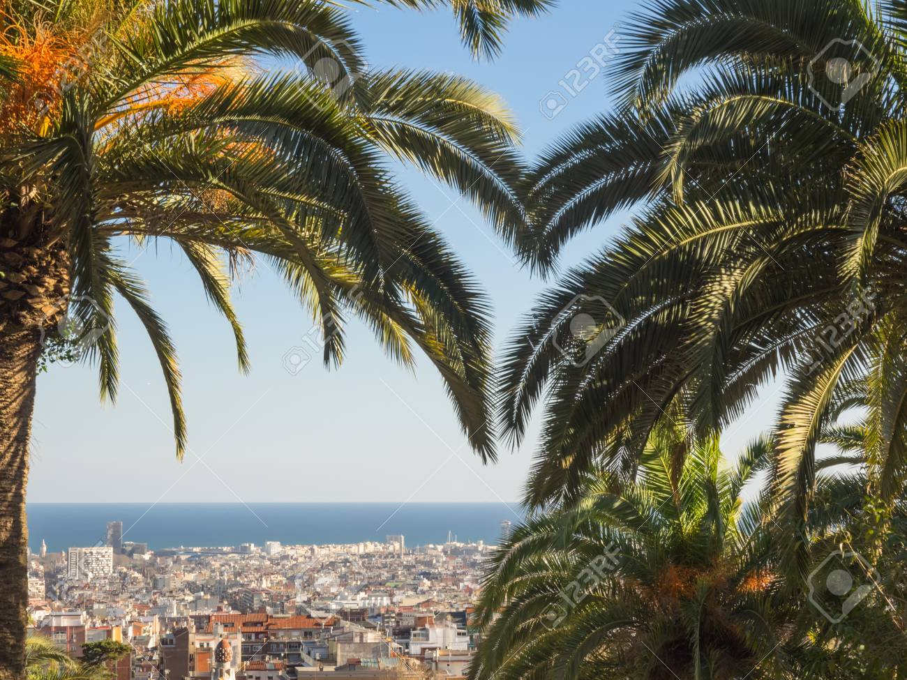 Vista Aérea De Barcelona, ??España, Enmarcada Por Palmeras Fotos ...