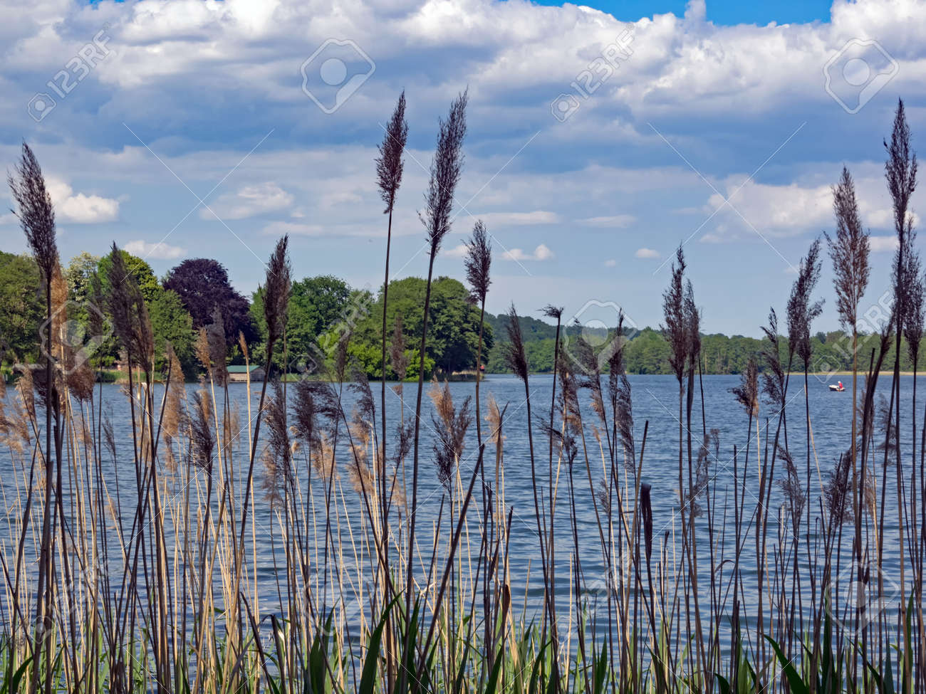 "Lake ""Haussee"" in the Feldberg lakes, Mecklenburg-Western Pomerania, Germany - 164494389"