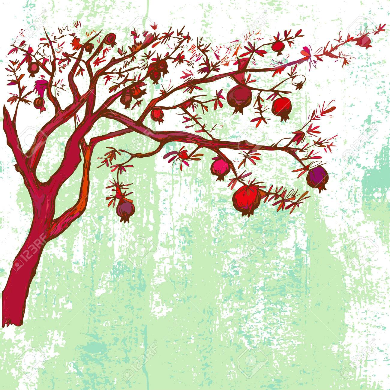 Hand Drawn Pomegranate Tree On Grunge Background Royalty Free Cliparts Vectors And Stock Illustration Image 47451824