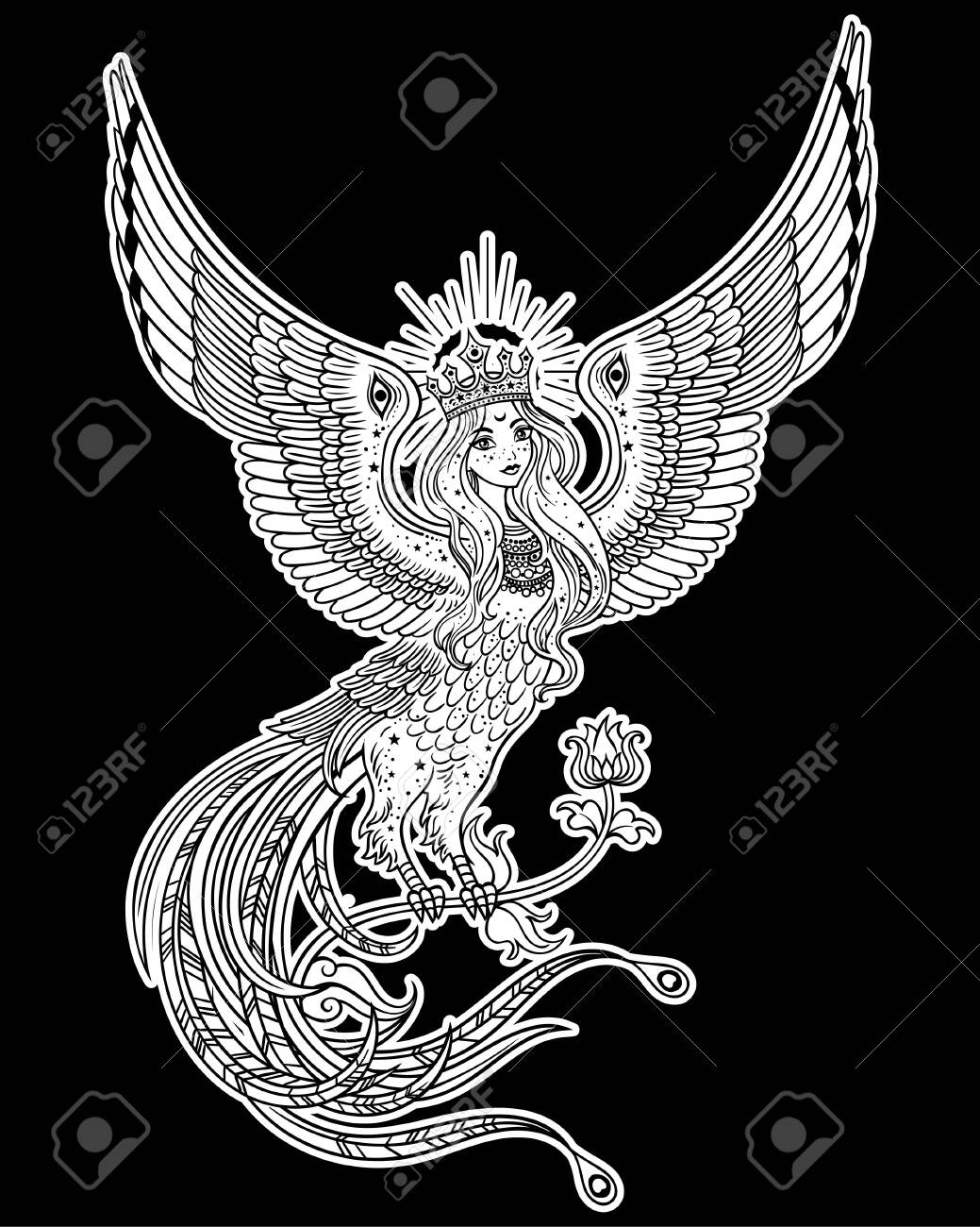 Hand drawn illustration with Beautiful Woman-headed bird. Sirin and Alkonost The Birds of Joy and Sorrow from Russian fairy tale. Vector art, perfect for tattoo, logo, cards and etc - 134726248