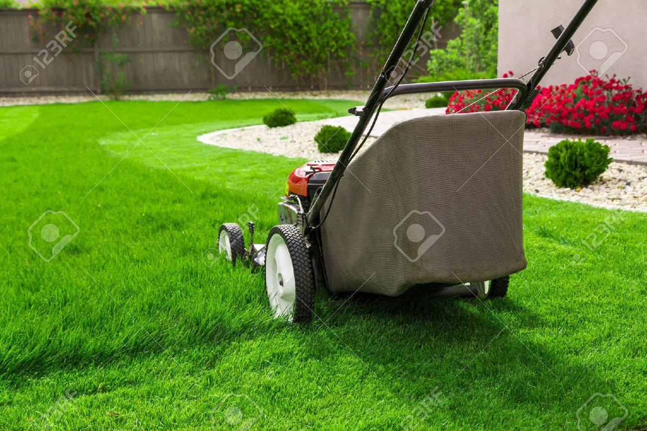 Lawn mower on green grass - 51293838
