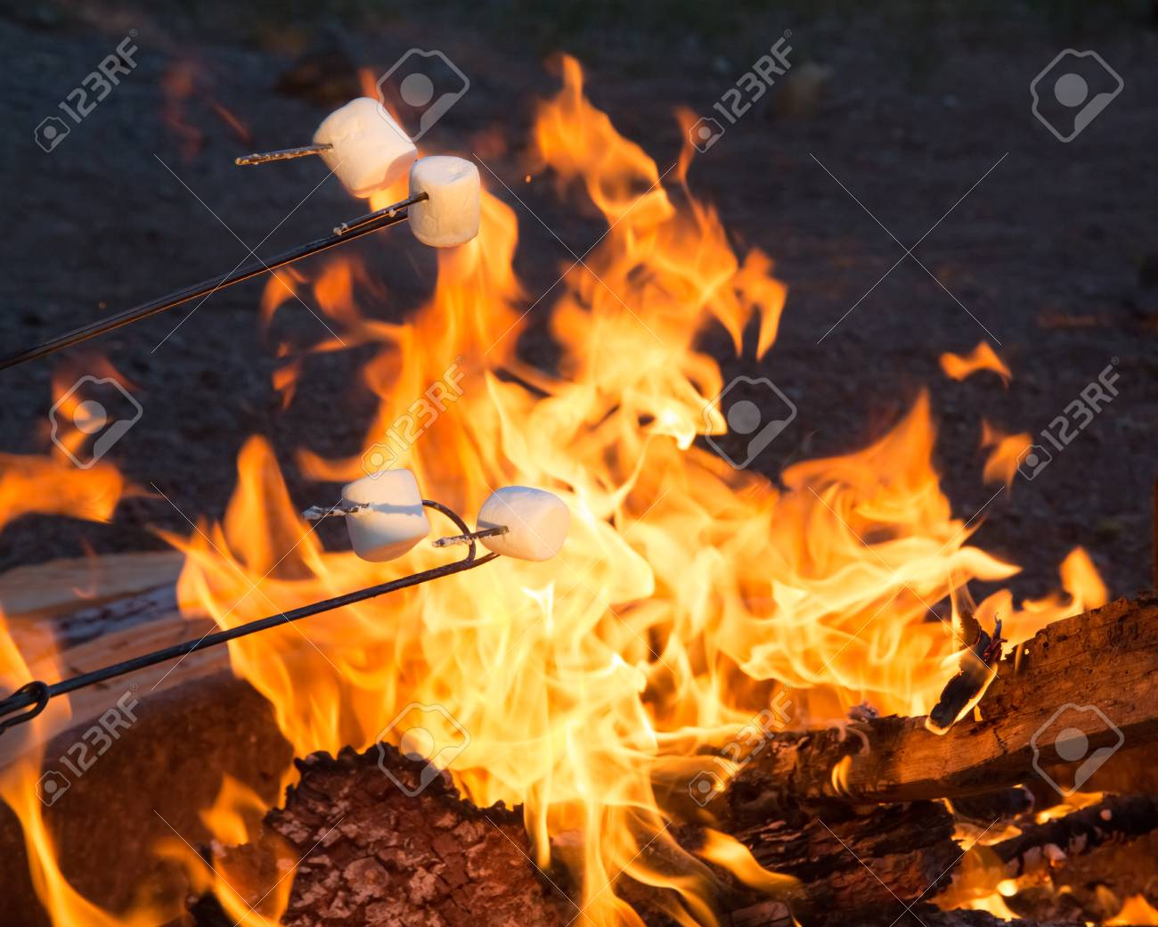 marshmallows roasting over campfire stock photo picture and royalty