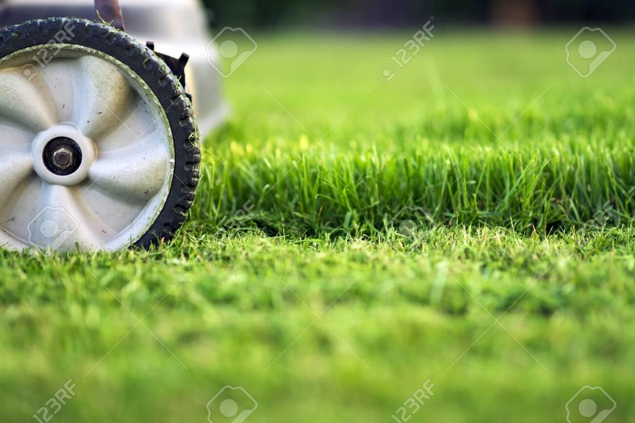 Lawn mower cutting green grass - 120393887