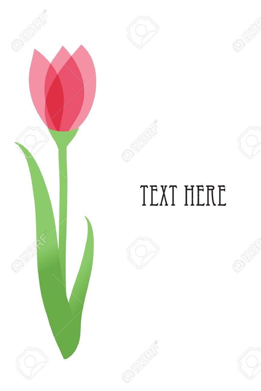 Tulip flowers. Stock Vector - 7705743