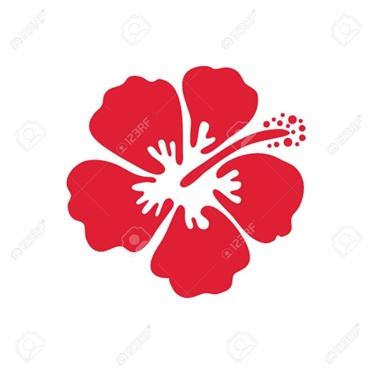 Vector Illustration Of Hibiscus Flower Stock Photo Picture And