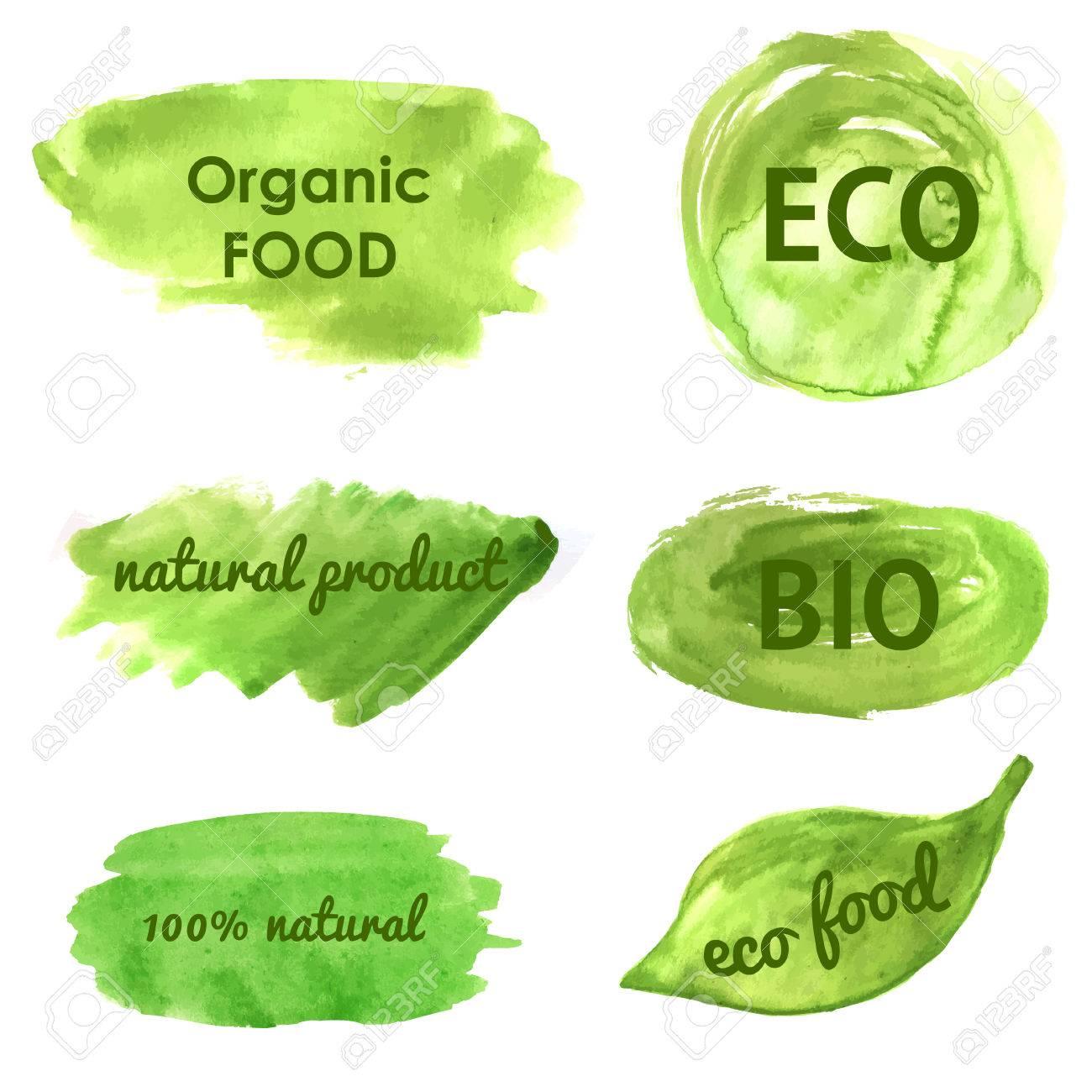 Banderas Ecológicas Y La Naturaleza Ir Verde Comida Saludable Orgánica Eco Bio Frases En Acuarela Pintada Banderas Verdes Y Fondos