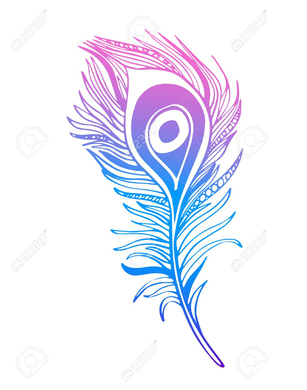 boho hand drawn ornamental feather line art tribalinspired rh 123rf com peacock feather clip art free download peacock feather border clipart