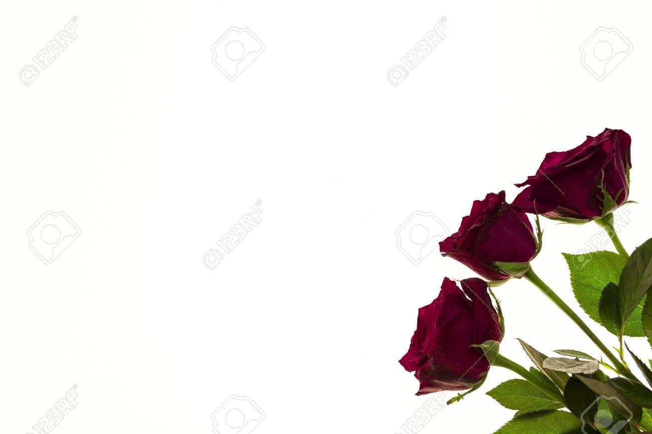 Schone Rosen Im Bouquet Hintergrund Fur Hochzeitskarten Grusskarte