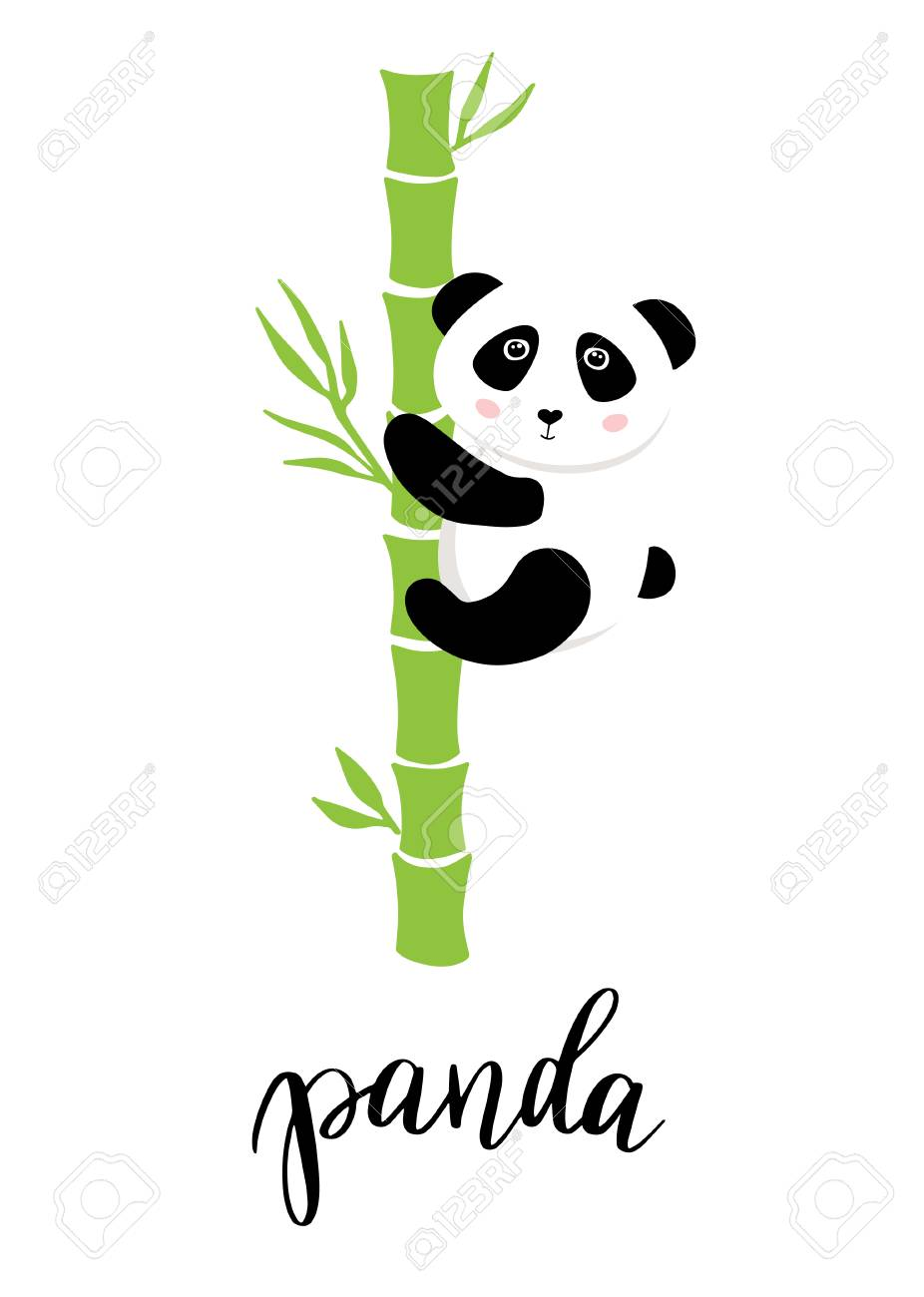 Cute Baby Panda On Bamboo Tree Vector Illustration Green Background Royalty Free Cliparts Vectors And Stock Illustration Image 90768835