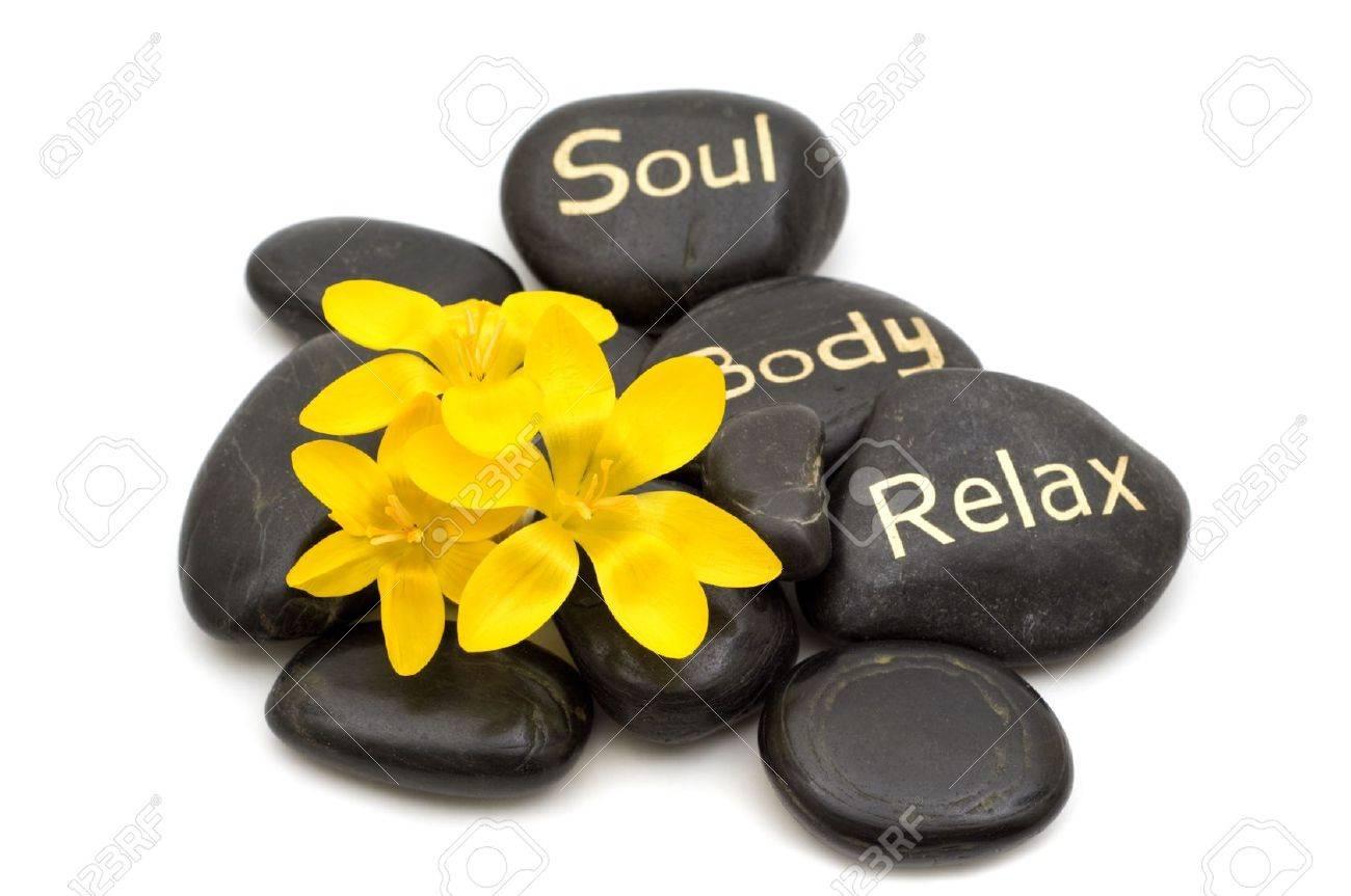 Spa wellness blumen  Wellness-Massage Schwarzen Steine Und Blumen Auf Weißem ...