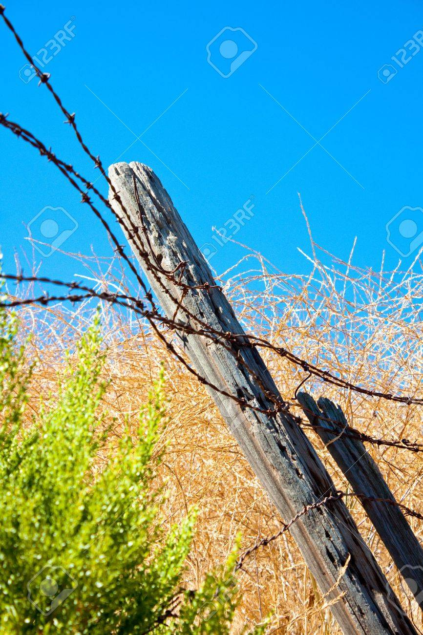 A vertical close-up shot of rusty barbed wire and tilting rotting wooden fence posts in a dry summer field in southern California. Stock Photo - 7657930