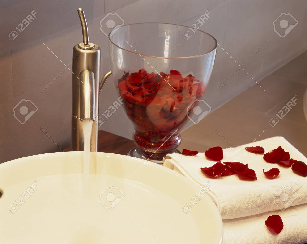 View of rose petals on a towel Stock Photo - 7215041