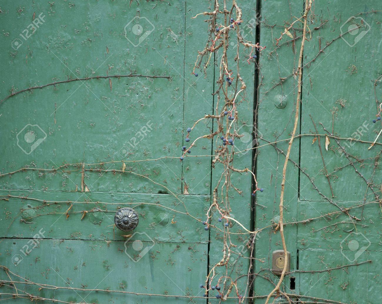 Close-up of a closed door Stock Photo - 7215450