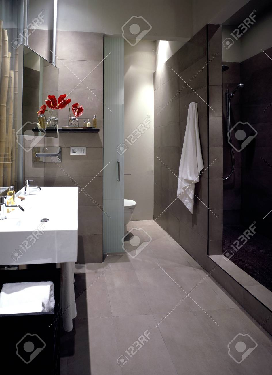 View of a neat bathroom Stock Photo - 7224050