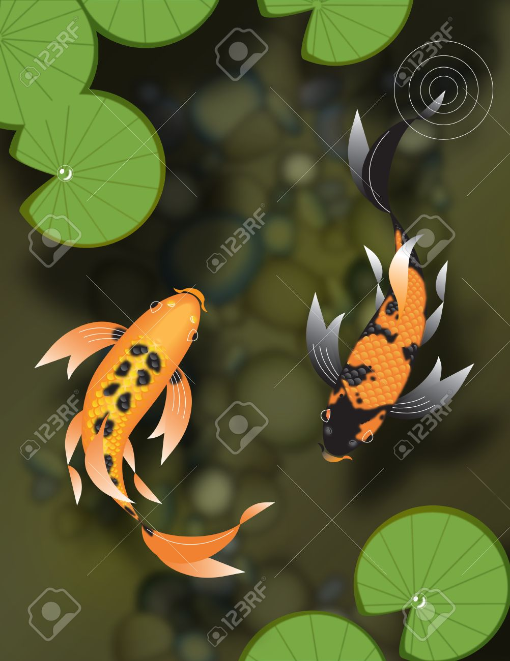 Stylized Butterfly Koi Fish Swimming In Pond With Lily Pads Stock Photo Picture And Royalty Free Image Image 24695295