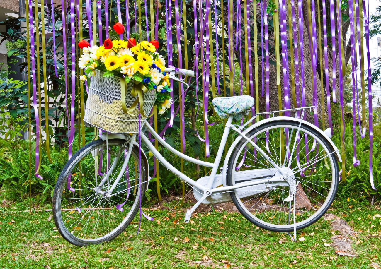 decorative old white painted  bicycle with basket of colorful flower Stock Photo - 13724678