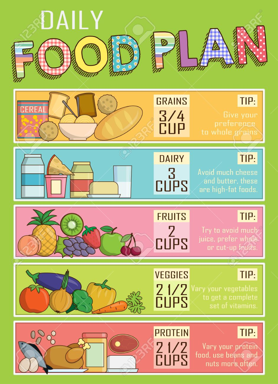 daily nutritional chart: Infographic chart illustration of a healthy daily nutrition