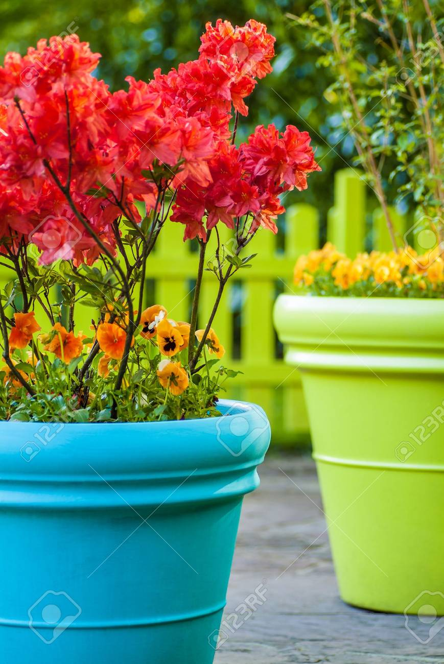 Colorful Blue And Green Flower Pots Filled With Flowers Stock Photo Picture And Royalty Free Image Image 19149880