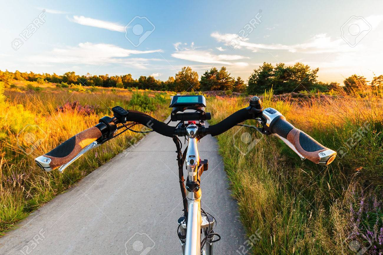 Electric bicycle in Dutch national park The Veluwe with blooming heathland, The Netherlands - 65015184