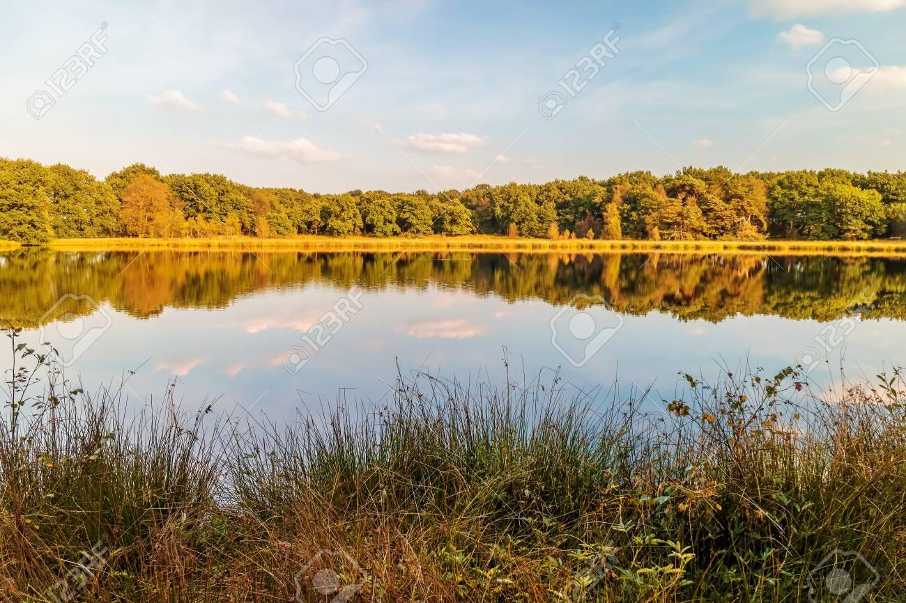オランダ ドレンテ州の泥炭湿原...