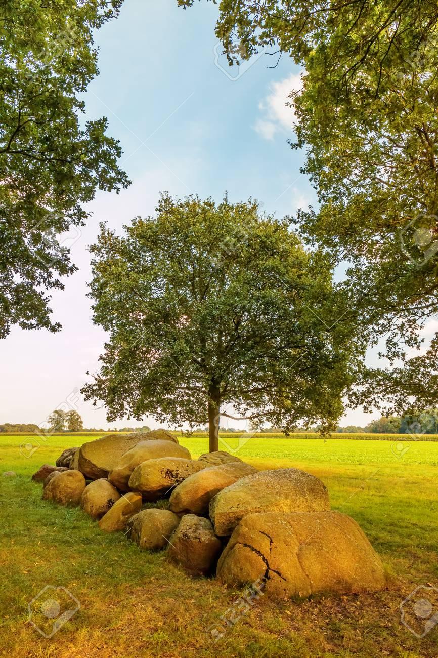 オランダ ドレンテ州の古代の巨...