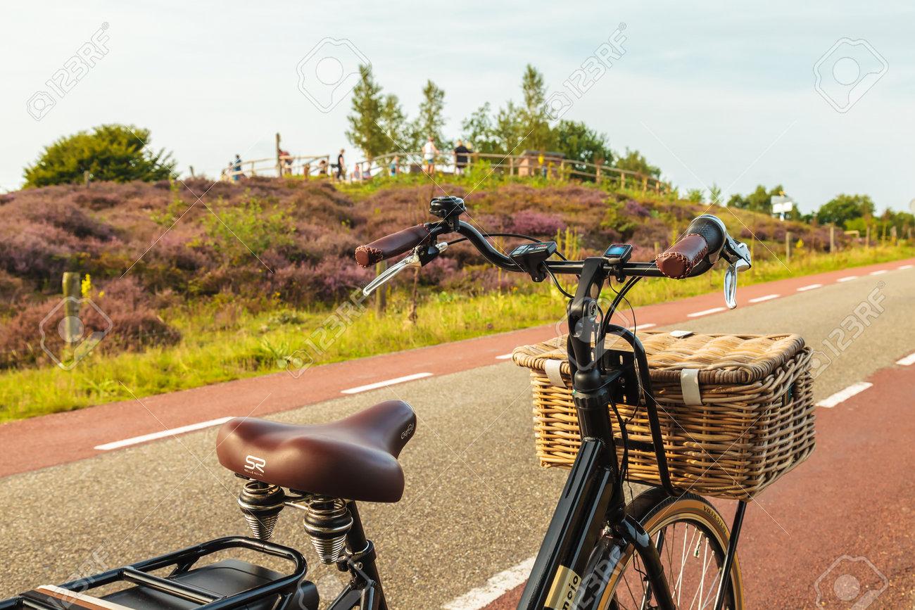 Rheden Paesi Bassi 25 Agosto 2017 Bicicletta Elettrica Nera Del Carico Con Il Canestro Davanti Al Veluwe Posbank Con I Turisti In Rheden Paesi