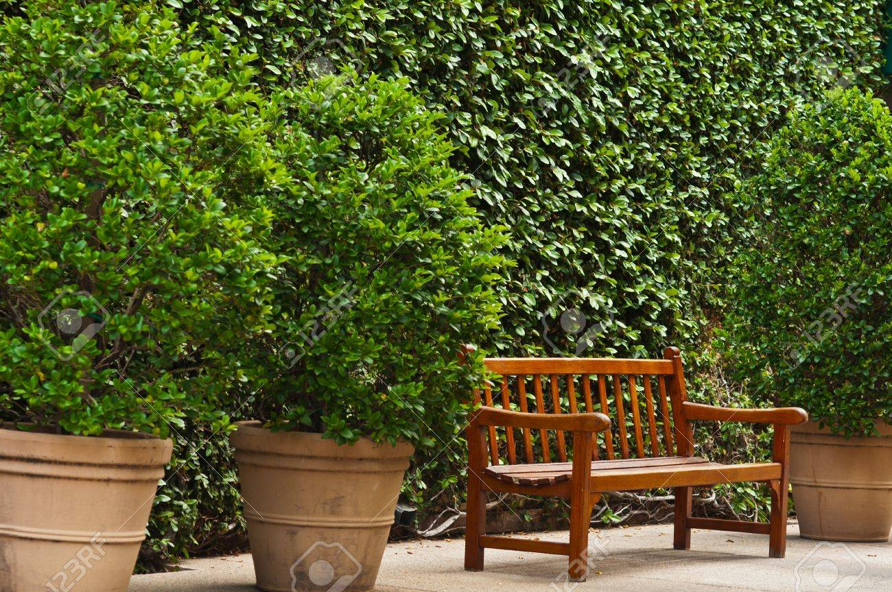 Pleasing Brown Wooden Bench In Between Some Potted Plants Caraccident5 Cool Chair Designs And Ideas Caraccident5Info
