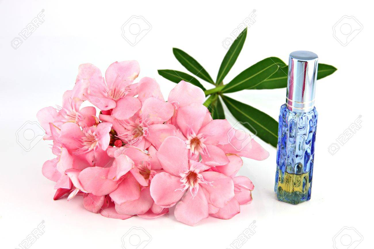 Bouquet Of Light Pink Flowers And Blue Perfume Bottles On The