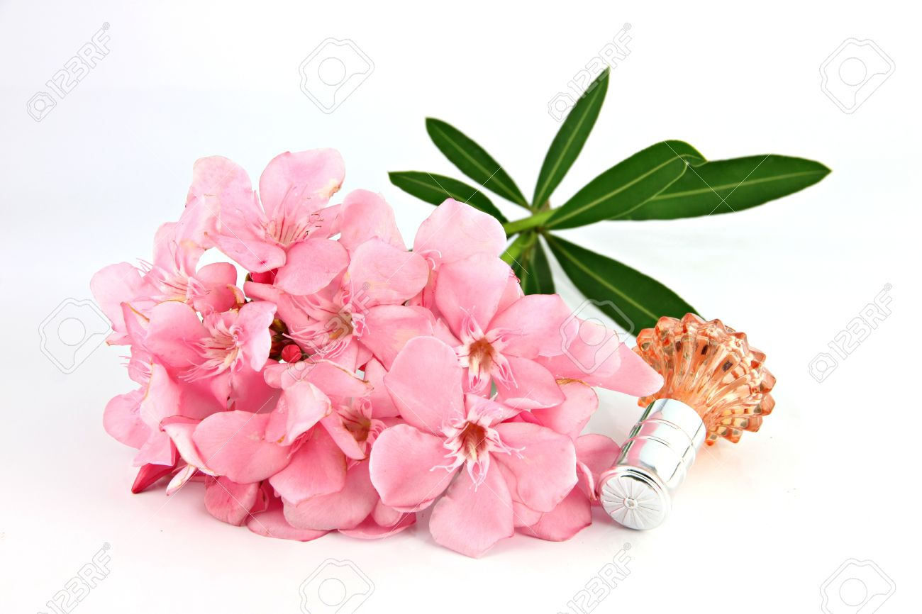Bouquet Of Light Pink Flowers And Orange Perfume Bottles On The