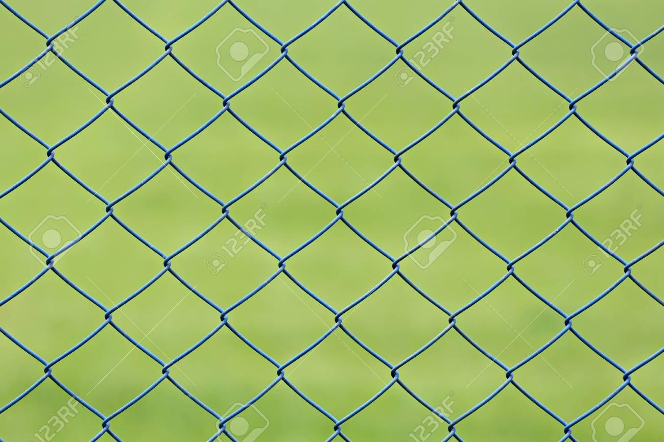 Treillis métallique ou cage en acier de pelouse verte dans le jardin pour  la conception de fond.