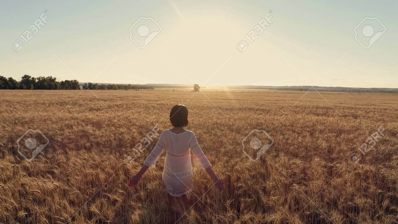 Aerial photography Girl running cross the wheat field at sunset. Slow motion, high speed camera - 88931201