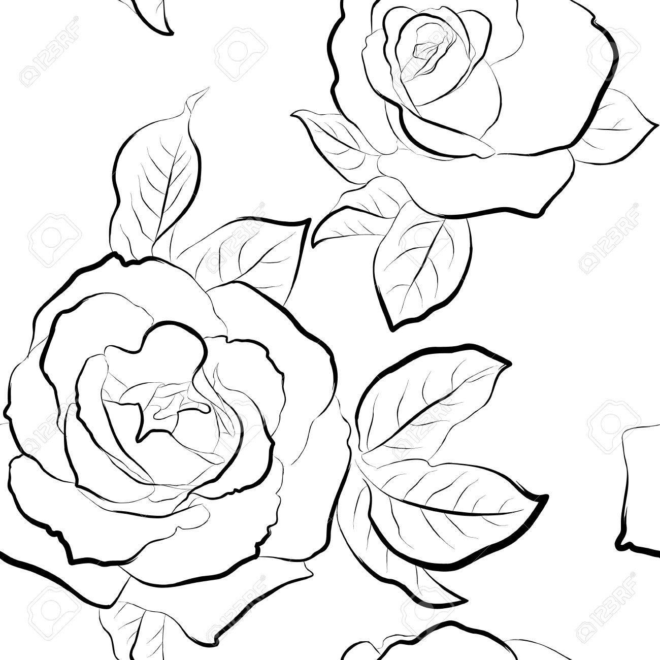 16+ Wallpaper Rosen Schwarz Weiß Background