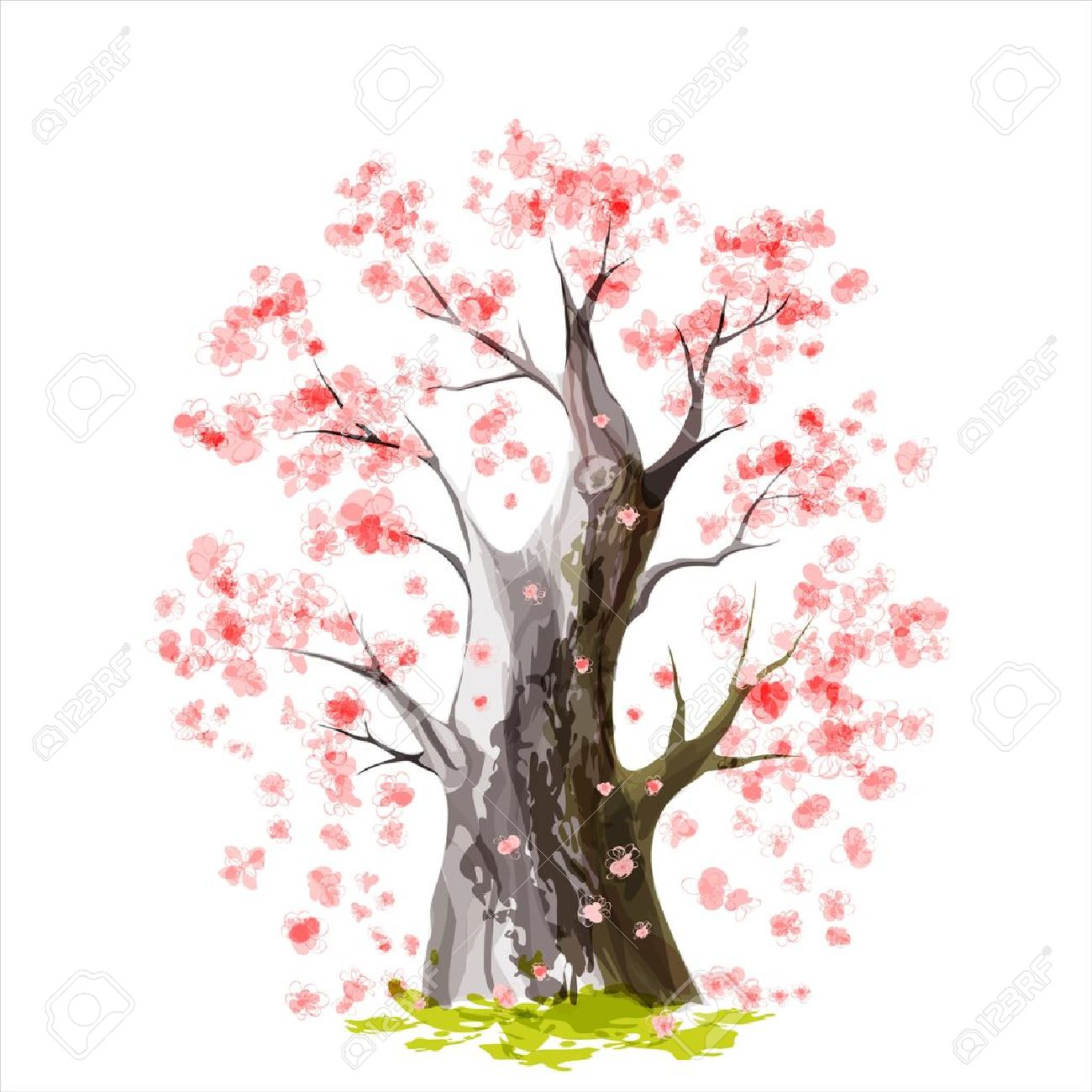 Stylized Blooming Japanese cherry tree Stock Vector - 17226273