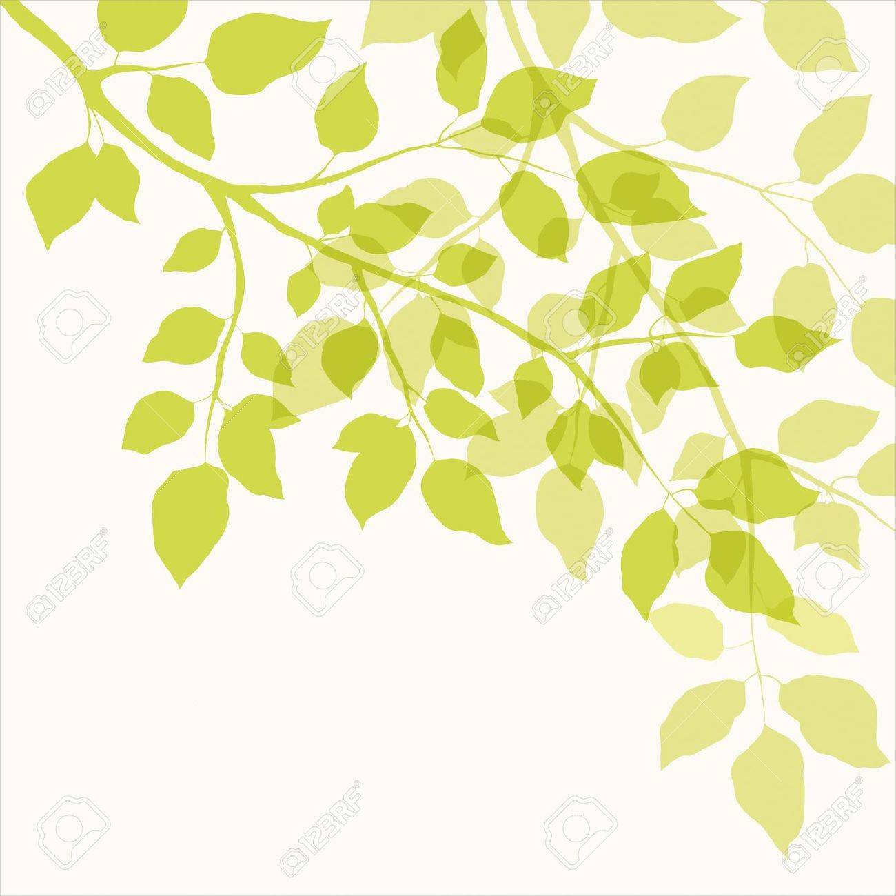 Branch with green leaves  Floral background Stock Vector - 18169394