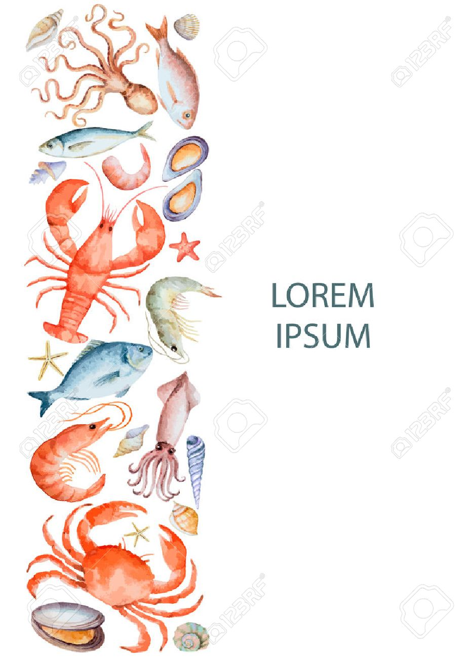 Watercolor set of seafood from lobster, crab, fish, squid, octopus, shrimp, shells on a white background for your menu or design, vector illustration. - 39281283