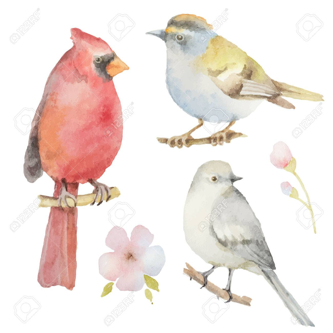 Set Of Watercolor Birds And Flowers Spring Design Your Greeting
