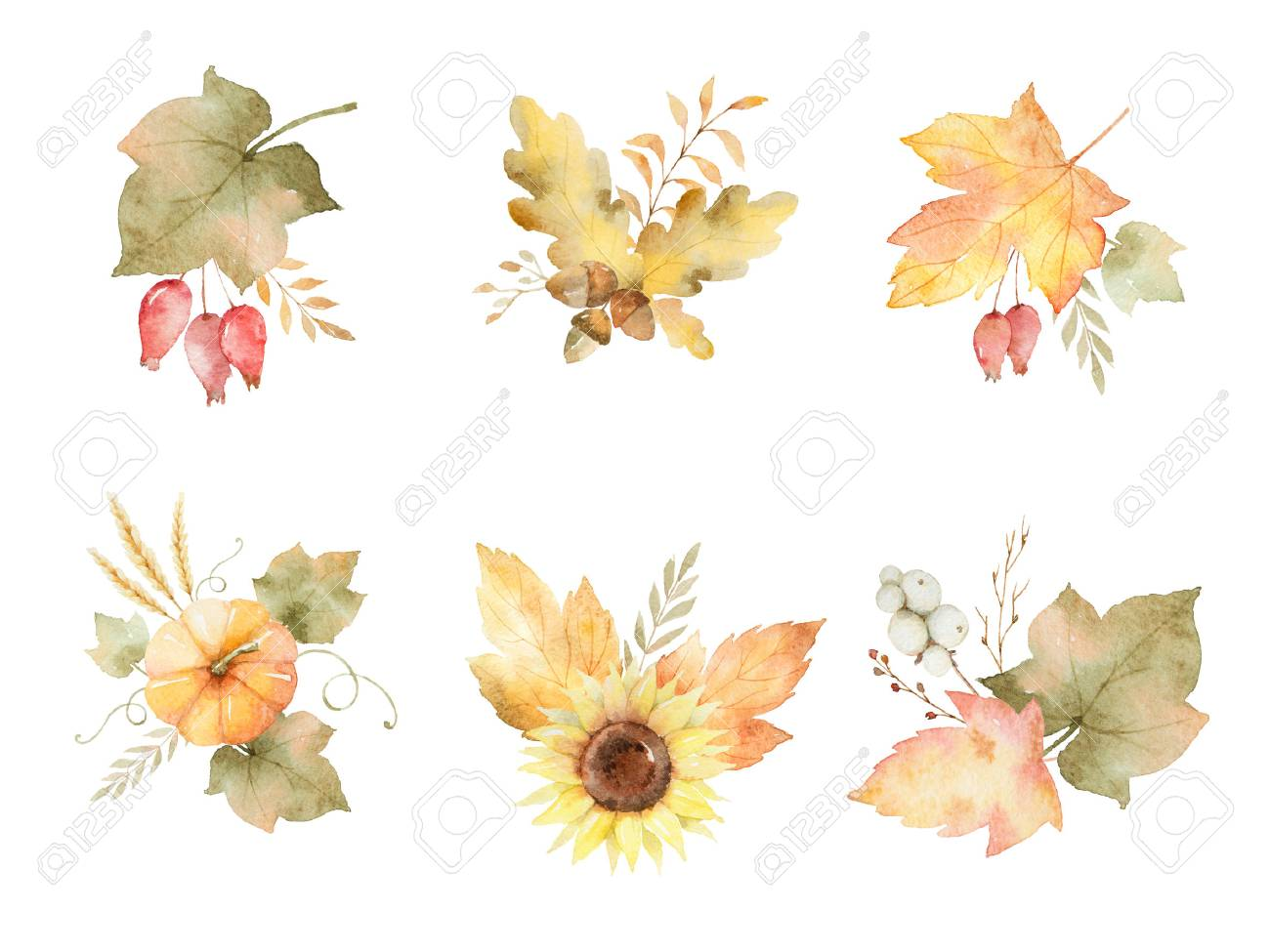 Watercolor autumn set of leaves, branches, flowers and pumpkins isolated on white background. - 82795116